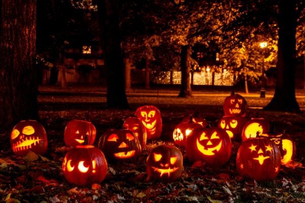 Lit Halloween Pumpkins