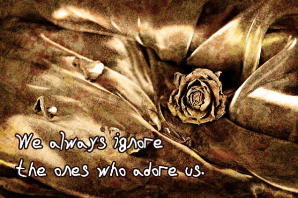 We always ignore the ones who adore us.