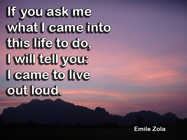 Quote by Emile Zola