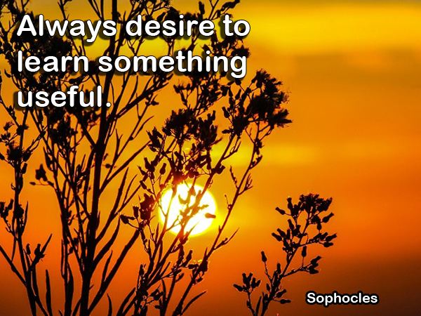 Quote by Sophocles