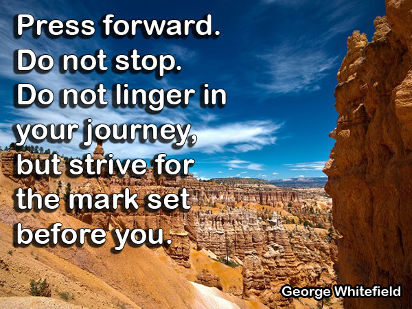 Quote by George Whitefield