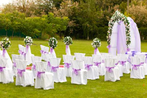 purple wedding theme on green grass