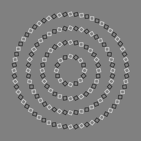 Optical Illusion Circles. Are they really swirling?