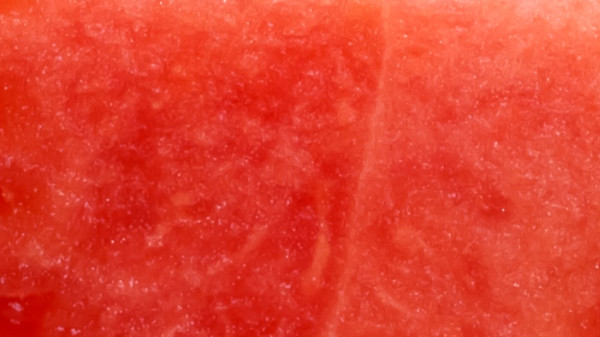watermelon color background