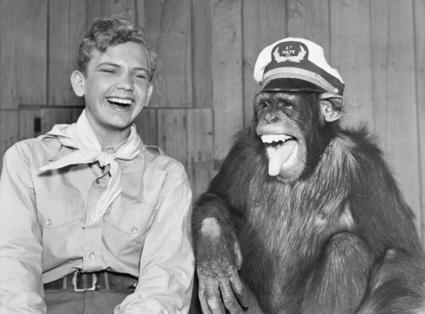 A Picture of a Monkey Laughing with a Boy