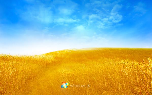 field picture wallpaper